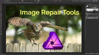 Affinity Photo: Exploring The Image Repair Tools