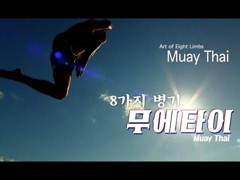 3 Muay Thai Art of Eight Limbs