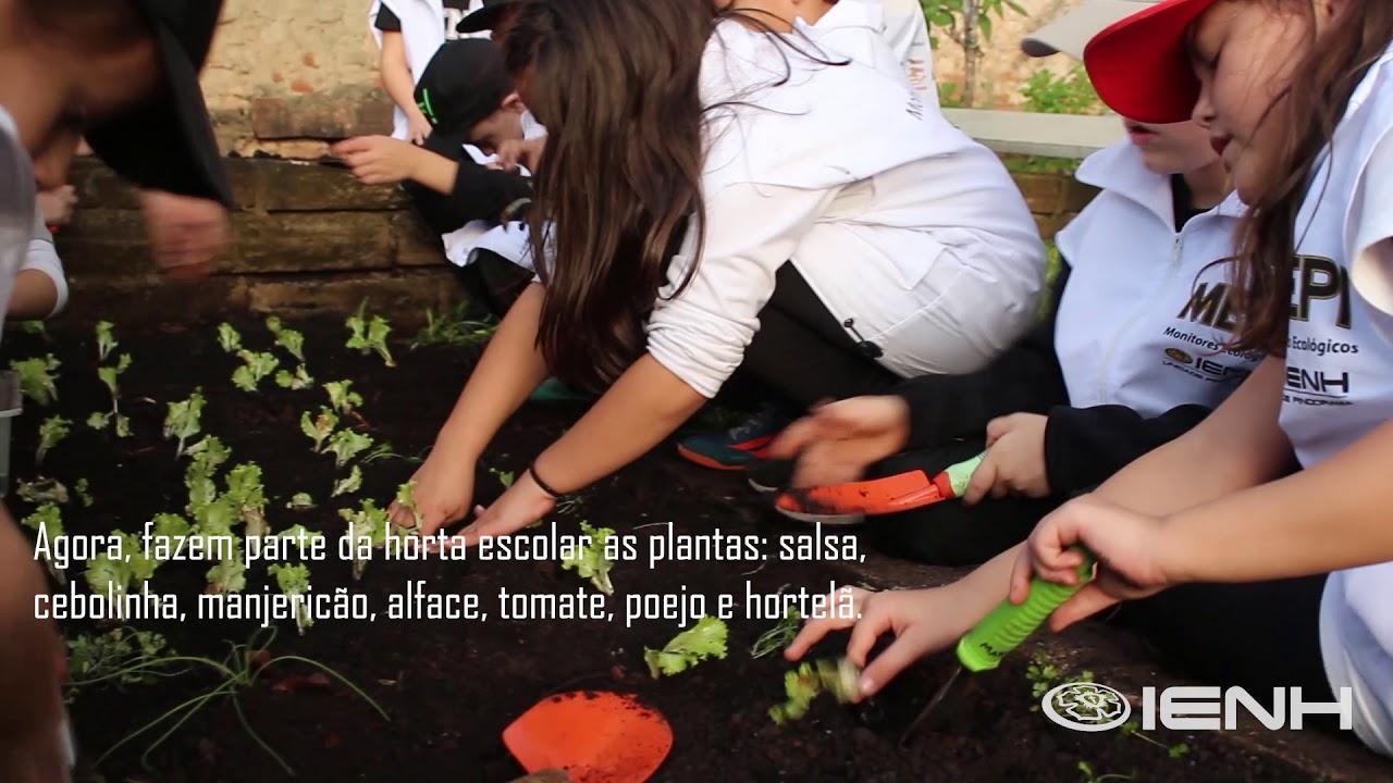 Horta escolar na Unidade Pindorama