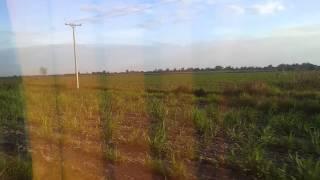 フィリピンルソン島広大な農地