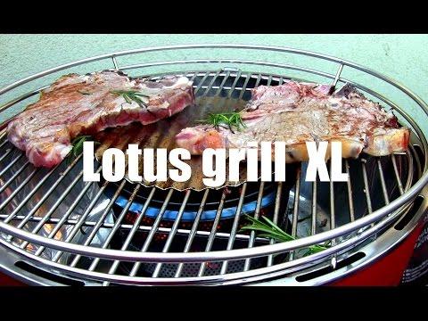 Rauchfreier Holzkohlegrill Xl : Lotusgrill g gr xl limettengrün günstig kaufen