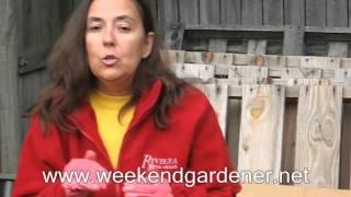 Making A Chicken Wire Compost Bin
