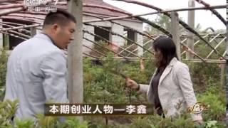 20140314 致富经 本期创业人物——李鑫