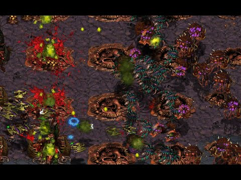 Brood War Sunday Stream! Casting YOUR REPLAYS! Play StarCraft with Falcon! May 24, 2020