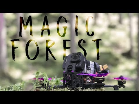 magic-forest--testing-falco-x--cinematic-drone-racing-amp-proximity-freestyle