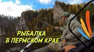 Правила рыбалки в перми
