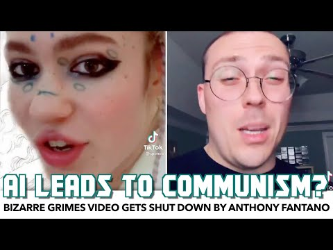 Bizarre Grimes Video Gets Shut Down By Anthony Fantano