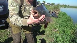 Рыбалка на озере игумново в дурнихе
