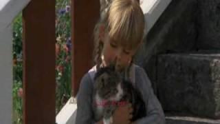Ida Synger Lille Katt