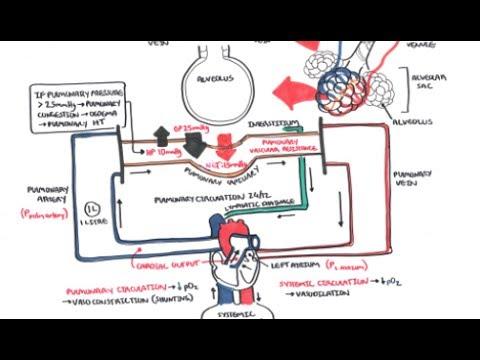 Hypertensive kriza lodhje