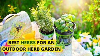 Best Herbs for an outdoor Herb Garden