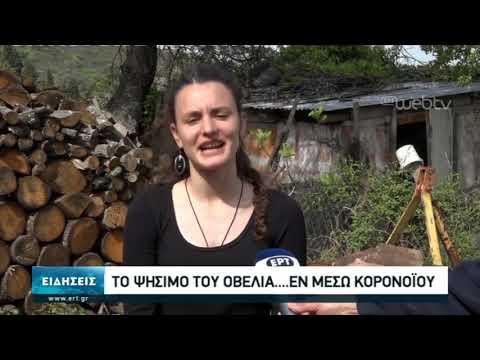 Το ψήσιμο του οβελία… εν μέσω κορονοϊού  | 19/4/2020 | ΕΡΤ