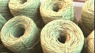 実のような綿の糸玉