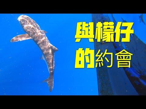 [釣魚]我與檬仔(海鱺)有個約會~[rachycentron canadum]