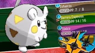 Togedemaru  - (Pokémon) - ¡TOGEDEMARU A NIVEL 1 SIMPLEMENTE INCREÍBLE! Pokémon Ultra Sol/Luna: COMBATE