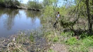 Рыбалка в тарасовке село тарасовка