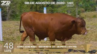 Coro 2336 b4 fiv
