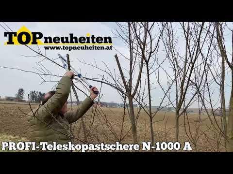 PROFI TELESKOP-ASTSCHERE N1000 A
