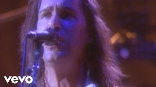 Dan Fogelberg - Part of the Plan (from Live: Greetings from the West)
