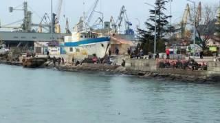 Район туапсе рыбалка