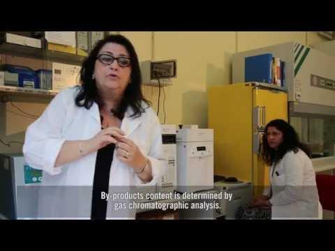Il trattamento e la prevenzione della malattia degenerativa del disco cervicale della colonna cervic