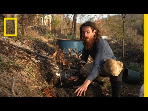 How to Plant a Tree | Live Free or Die: DIY thumbnail