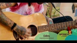Far From Alaska Acústico - Cobra (Música no Jardim)