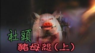 台灣奇案 EP246|社頭-豬母怨(上)