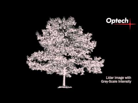ILRIS Terrestrial Laser Scanner   Spinning Tree