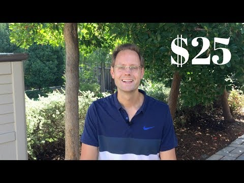 How To Invest $25 Per Month With No Fees (Investing In Stocks For Dividends)