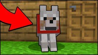 Minecraft: كيف تصنع كلب حراسة يعمل! [سهل]