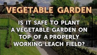 Is It Safe to Plant a Vegetable Garden on Top of a Properly Working Leach Field?