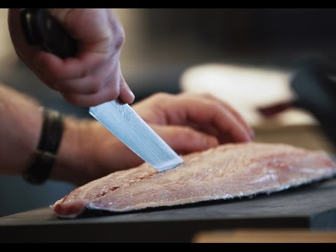 Masterclass in Motion: Kingfish at Automata with Clayton Wells