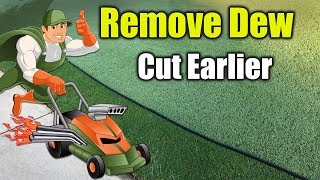 Cutting Lawn Early Morning - Removing the Dew