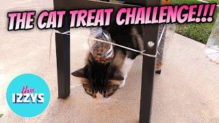 The Cat Treat Challenge
