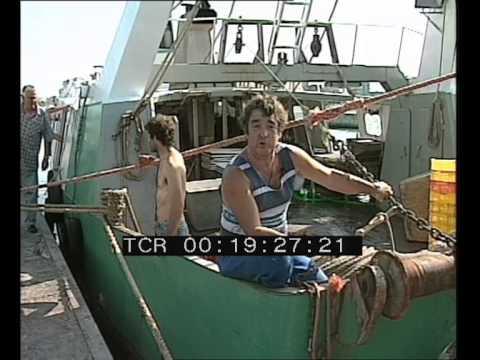 La pesca su Voronezh nel video di regione Di Lipetsk