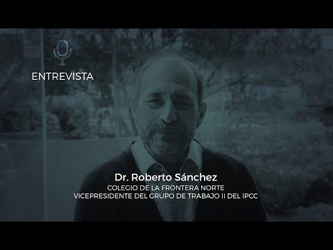 Entrevista al Dr. Roberto Sánchez Rodríguez