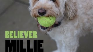 I'm Just A Believer | Millie