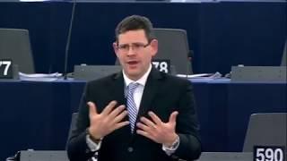 Képviselői felszólalás – 2017.11.15. Strasbourg