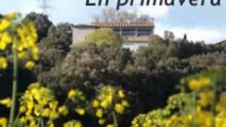 Video del alojamiento Mas El Corral