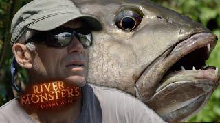 The Niugini Black Bass - River Monsters