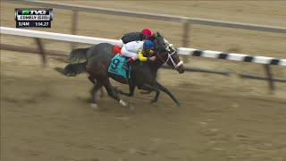 RACE REPLAY: 2015 Comely Stakes