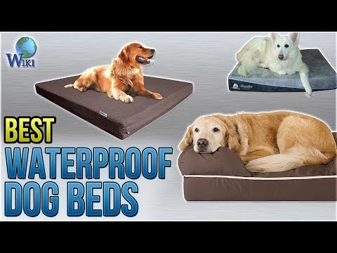 Dog Bed - Wholesaler & Wholesale Dealers in India