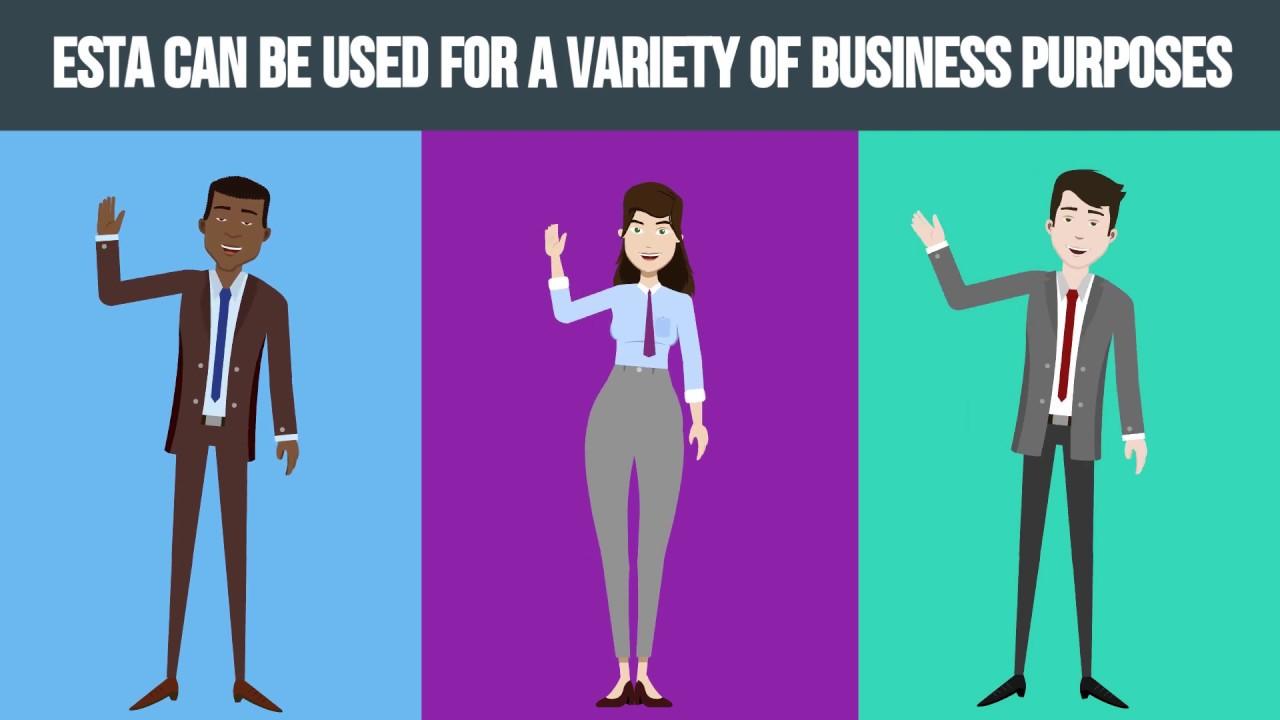 ESTA for Business Purposes
