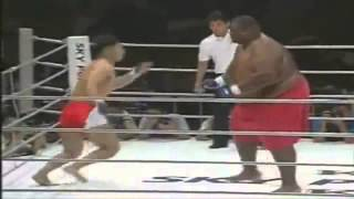 Funny. Sumo vs Boxing (Сумо против бокса)