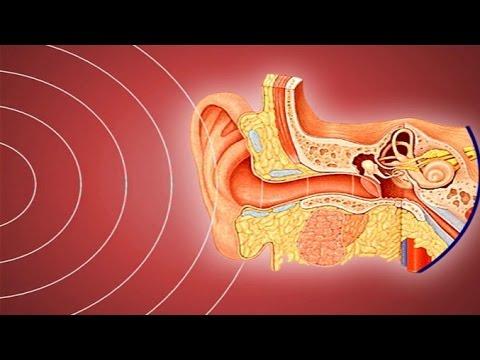 การวินิจฉัยแยกโรคของ neurodermatitis