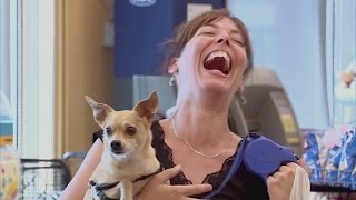 Best of Just for Laughs Gags 2017: Funny Dog Face