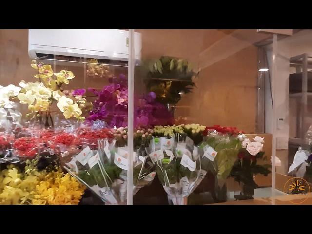 Giới Thiệu Shop Hoa Ánh Dương