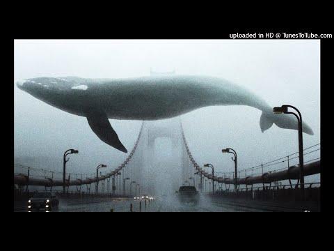 прыгай вниз не бойся (синий кит)