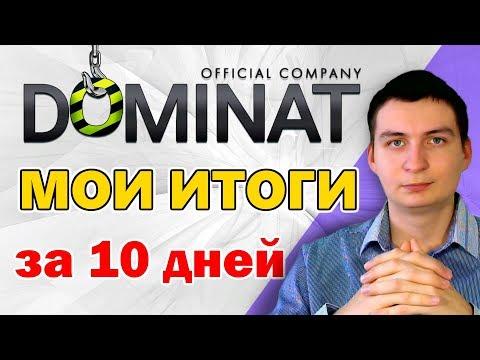 Dominat результаты за 10 бизнес дней. Статистика и мои доходы + свежая выплата!